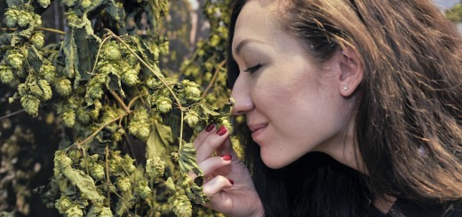 smelling the hops