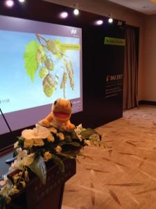 BAU press conference