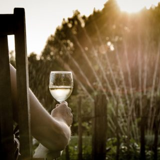 A person drinking a glass of white wine in a garden during the sunset