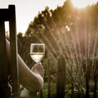 Eine Person trinkt beim Sonnenuntergang Weißwein im Garten