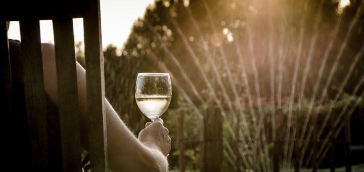Leichte Weine mit weniger Alkohol liegen im Trend - besonders an Sommertagen. Doch wie schaffen es die Winzer, den Alkoholgehalt zu reduzieren?