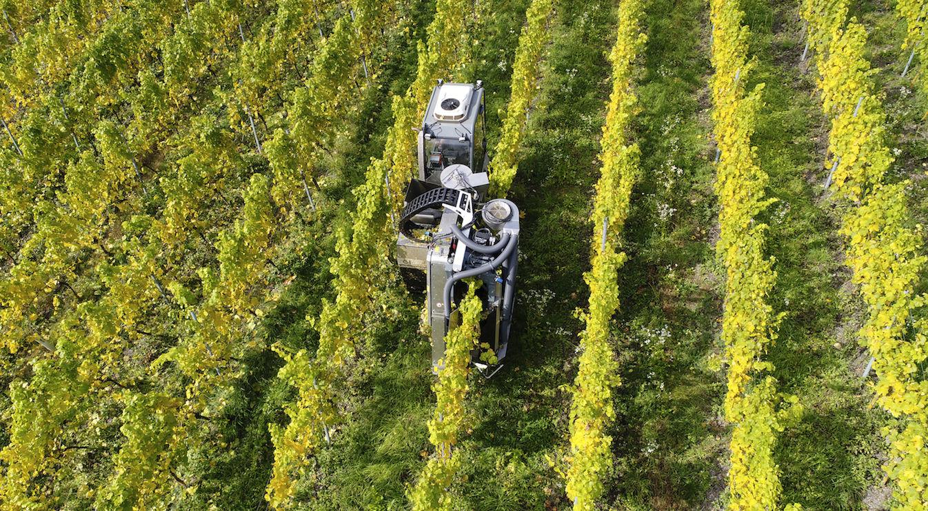 Weinbau in Steillagen von Innovationen gesichert
