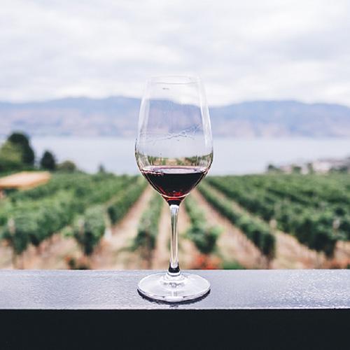Wein nach Weinlese